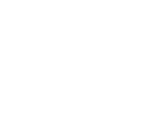 Freedivers NZ